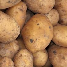 Healthier Potatoes Au Gratin